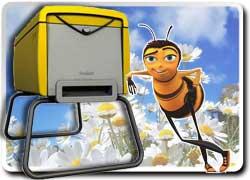 Пчеловодство как хобби для мещан