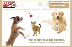 Сеть собственников и выгульщиков собак