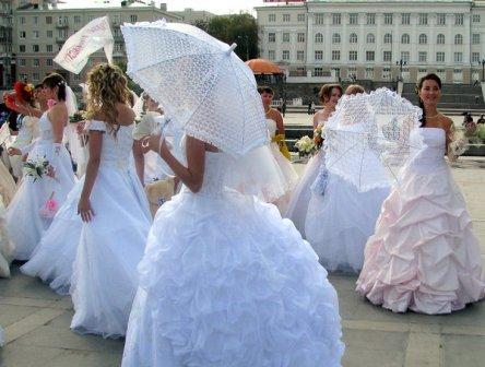 Зонтики для свадебной церемонии в аренду