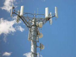 Сотовых операторов подозревали в сговоре с телемошенниками