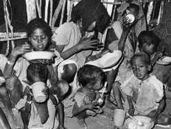 Выделенные голодающим средства попали к боевикам